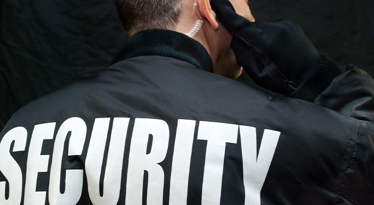 What Makes Professional Security Guards Stand Out?